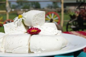 Овче сирене - как се прави домашно сирене