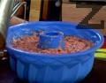Намасляваме и набрашняваме форма за печене, прехвърляме сместа. Поливаме със струйка олио, печем на 180 градуса, за 40-50 мин.