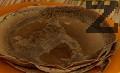 След като приготвим всички палачинки, ги подреждаме една върху друга в различни чинии според цвета им – светли и какаови.