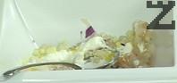 Приготвяме тартара. Поставяме филетираната риба в купа, поръсваме с 2 ч.л. сол и 2 ч.л. захар, оставяме за 10-15 мин. да се овкуси. Измиваме калкана и го подсушаваме, нарязваме на ситни кубчета. Поставяме в купа, заедно с наситнените лук и краставицата, на която сме отстранили семките. Поръсваме с щ