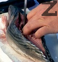Почистваме рибата, като правим прорез откъм гръбнака, за да запазим цели главата и опашката. Отстраняваме внимателно и средната кост.