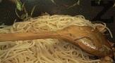 След няколко минути слагаме сварените, отцедени и измити със студена вода спагети. За кратко разбъркваме и запържваме на силен огън, поръсваме със захар.