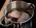 В тенджера се налива 1 л студена вода. Слагат се бутчетата 1 ч.л. сол, дафинов лист, и черен пипер. Загрява се и след като заври се отпенва. След 10 минути варене на слаб огън тенджерата се маха от котлона.