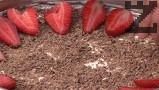 Отгоре слагаме настърган шоколад, декорираме с нарязани на филийки пресни ягоди.