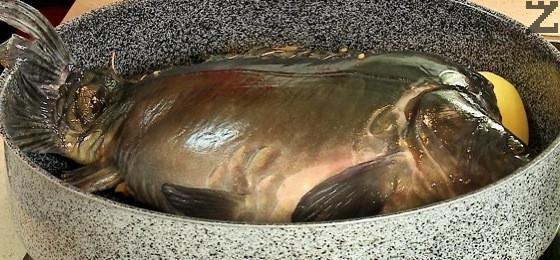 Рибата се слага в намаслена тава върху три едри картофа за да се пече под ъгъл.