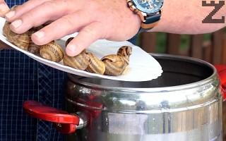 Черупките също трябва да се сварят преди да се напълнят. За това, те се слагат в тенджера под налягане за 10 минути, като се посоляват с 1 ч.л. сол.