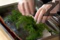Почистваме рибното филе от костите, поставяме го в тава с пресен копър с кожата нагоре и поръсваме с още пресен копър. Поливаме рибното филе с изстиналата марината и го оставяме в хладилник за 24 часа.