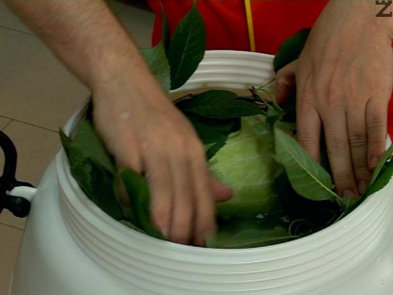 Притискаме, поръсваме със сол, отгоре поставяме листата от вишна. Наливаме догоре вода.